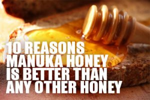10 Reasons Why Manuka Honey is Better Than Any Other Honey